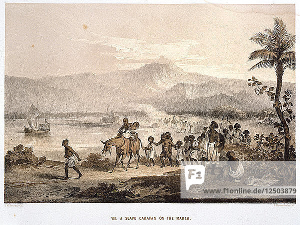 Slave Convoy on the March  1852. Artist: Unknown
