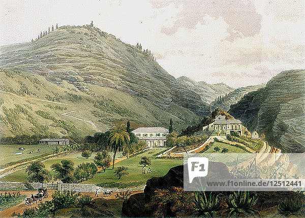 The Briars  St Helena  early 19th century (1851). Artist: Unknown