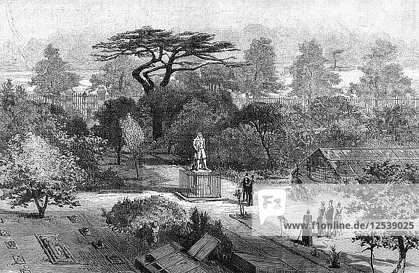 The old physic garden  Chelsea  1890. Artist: Unknown