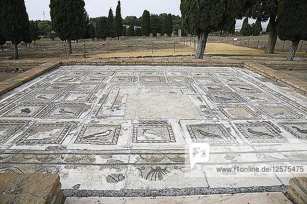 A mosaic in House 4  Italica  Spain  2007. Artist: Samuel Magal