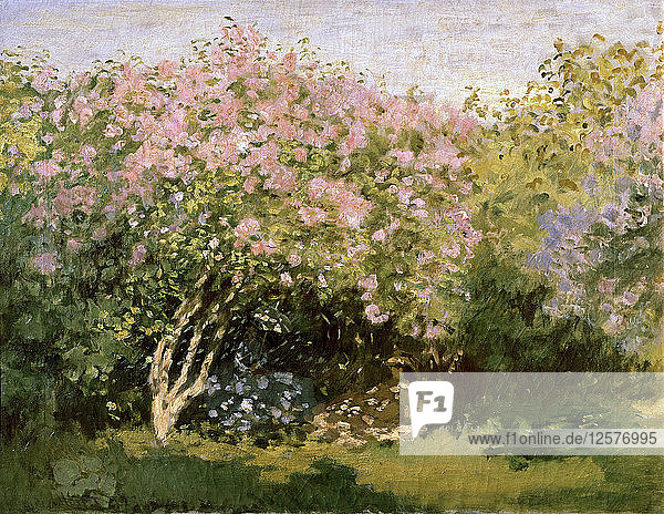 Lilac in the Sun  1872-1873. Artist: Claude Monet