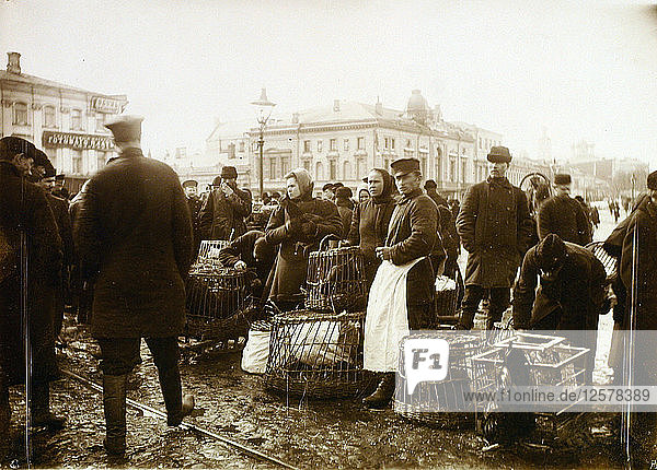 Bird market  Trubnaya Square  Moscow  Russia  1908. Artist: Unknown