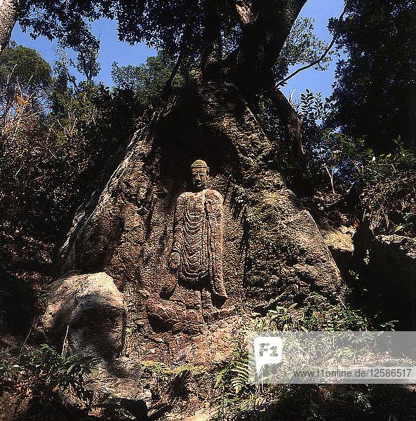 Nara park  rock carving.
