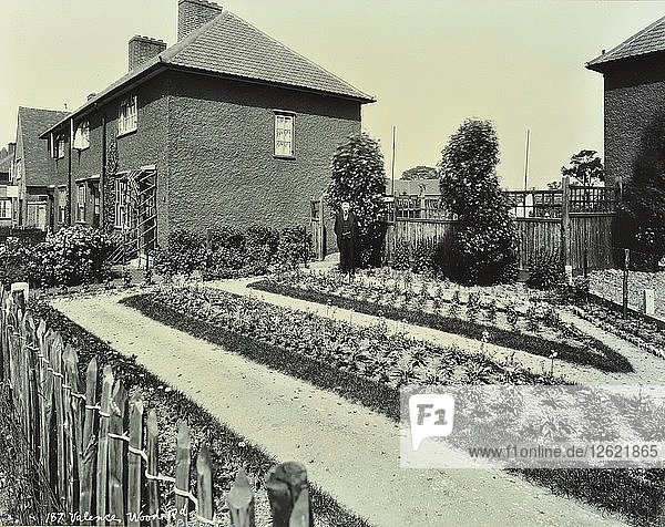 Garden at 187 Valence Wood Road  Becontree Estate  Ilford  London  1929. Artist: Unknown.