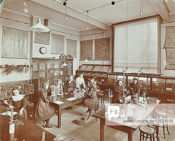 Science class  Aristotle Road Girls School  Clapham  London  1908. Artist: Unknown.