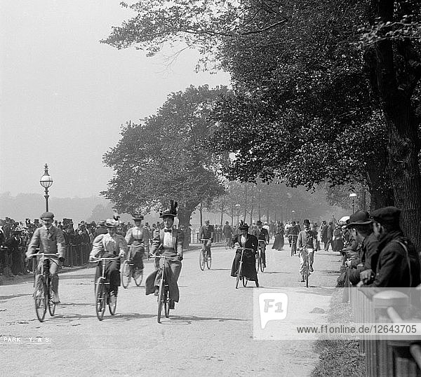 Cycling in Hyde Park  Westminster  Greater London  c1900s(?). Artist: York & Son.