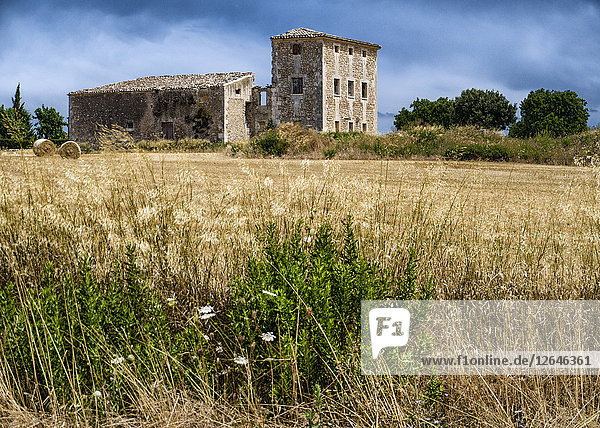 Landhaus  nahe Santa Maria  Mallorca  Spanien  Europa
