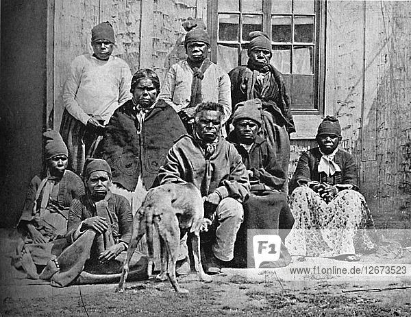 A group of some of the last of the Tasmanians in European dress  1902. Artist: John Watt Beattie.