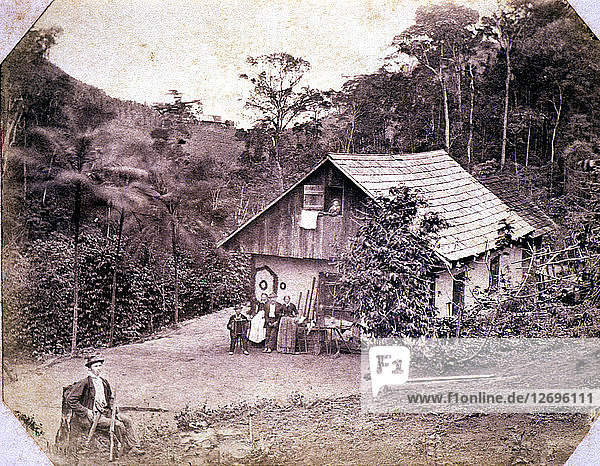 Immigrants in Brazil in the late 19th century  Detlev Lacht settler family in the German Colony ?