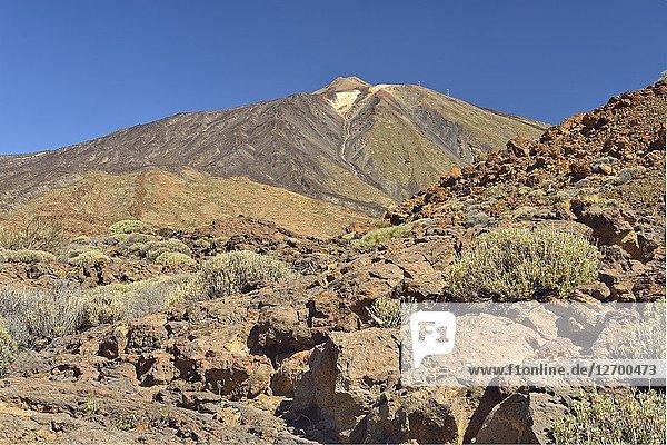 Teide volcano  Cañadas del Teide National Park  Tenerife  Canary Islands  Spain.