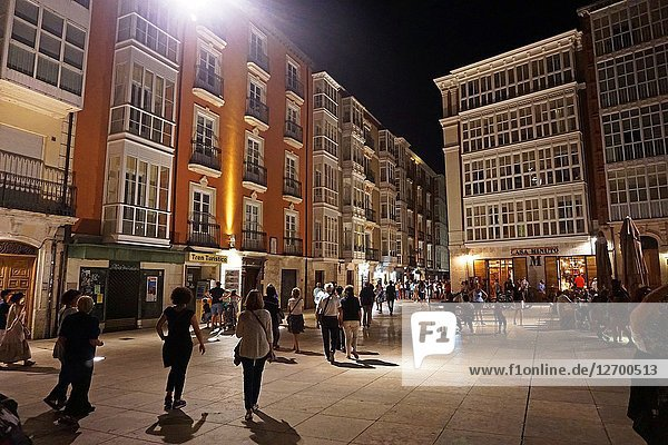 King San Fernando Square at night. Burgos  Castilla y Leon  Spain  Europe