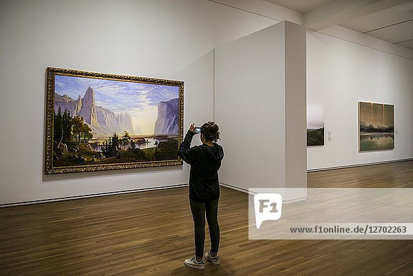 Canada  Quebec  Montreal  Musee des Beaux Arts  fine arts museum  woman photographing painting.