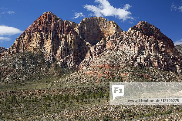 Mount Wilson  Red Rock Canyon National Conservation Area  Nevada.