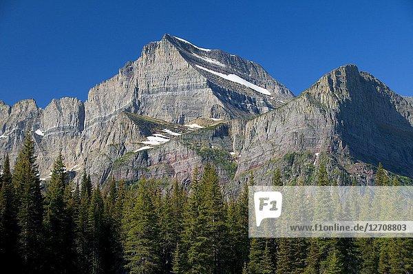 Mt Gould  Glacier National Park  Montana.