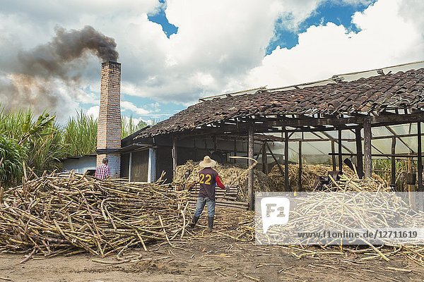 Traditional cane sugar manufacture near Alto de los Idolos  San Agustin  Colombia.