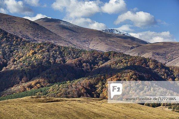 Tandzut valley  near Vanadzor  Lori province  Armenia.
