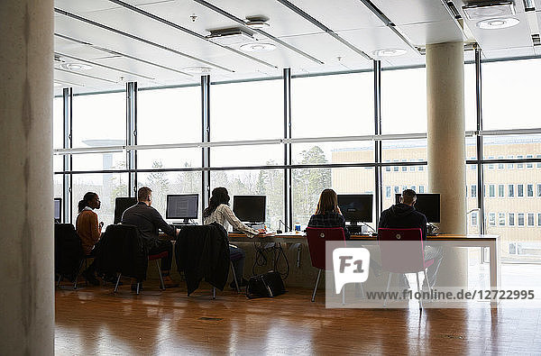 Rear view of young male and female students using computers in university