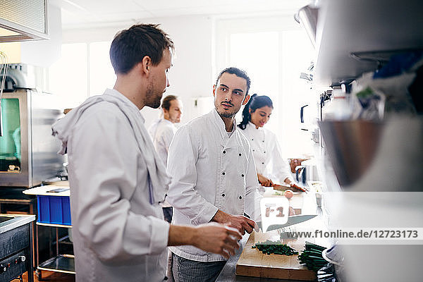Young chef talking with colleague while chopping vegetable in commercial kitchen