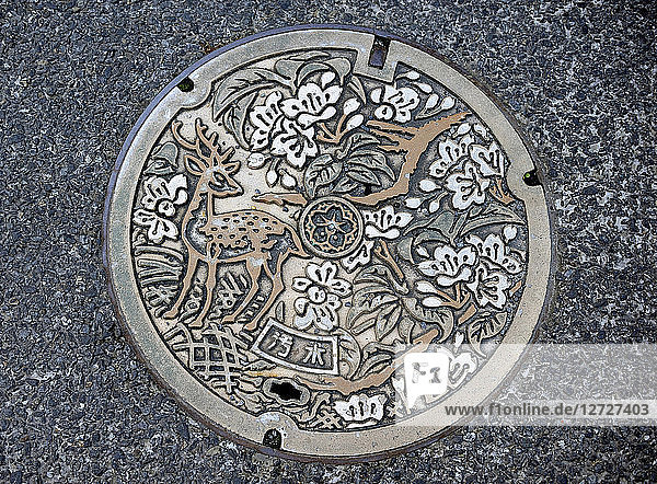 Japan  decorated manhole in Nara