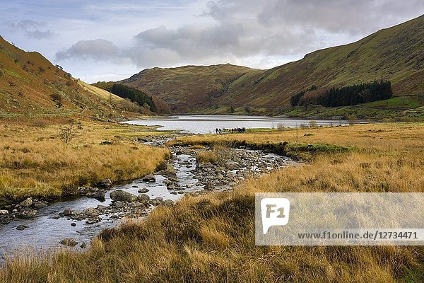 Mardale Beck and Haweswater Reservoir at Mardale Head in the Lake District National Park  Cumbria  England.