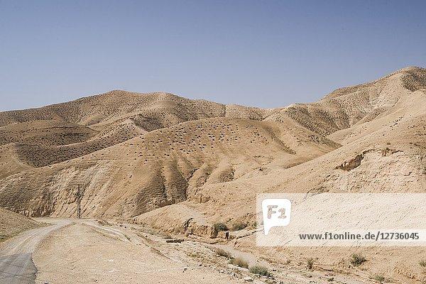 Judean Desert  Masada National Park  Israel  Middle East.
