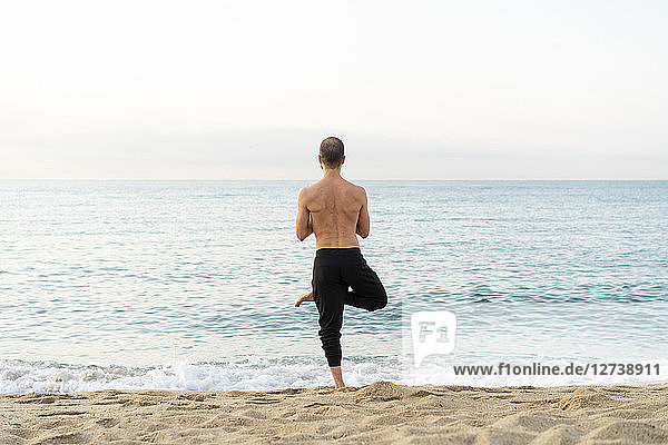 Spain. Man doing yoga on the beach in the evening  tree position  rear view