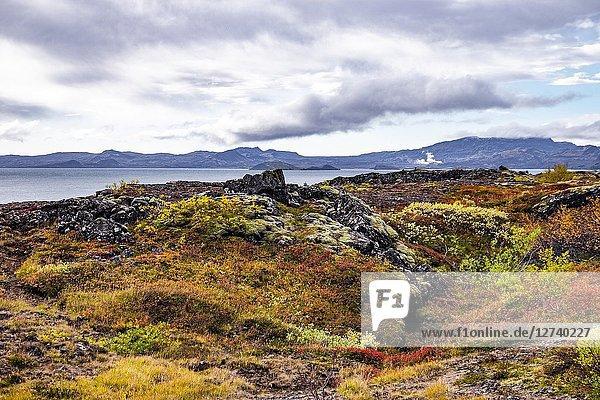 Nature of Southwest Iceland.