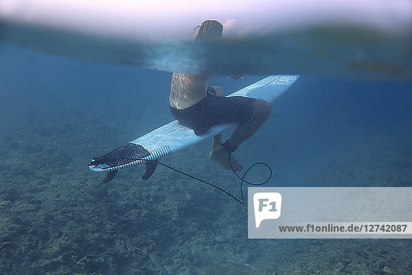 Maledives  Indian Ocean  surfer sitting on surfboard  underwater shot