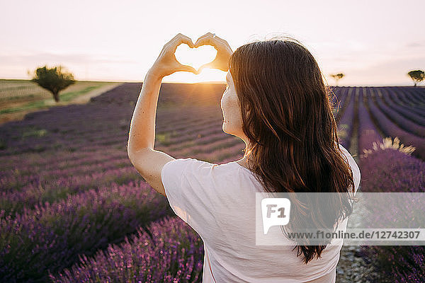 France  Valensole  back view of woman shaping heart with her hands in front of lavender field at sunset