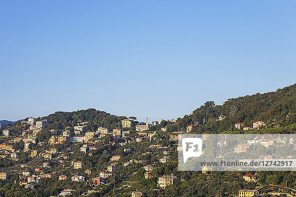 Italy  Liguria  mountain village near Camogli