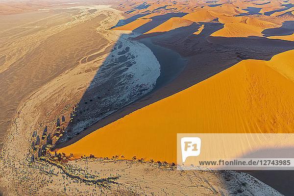 Africa  Namibia  Namib desert  Namib-Naukluft National Park  Aerial view of desert dunes