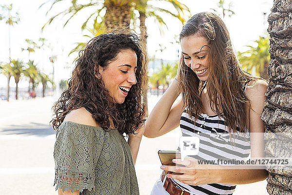 Two happy female friends looking at a smartphone on promenade with palms