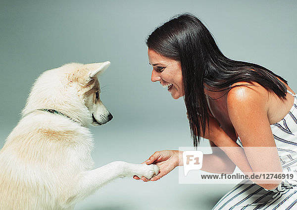 Smiling woman shaking dogs paw Smiling woman shaking dogs paw