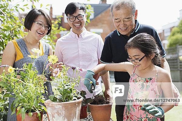 Multi-generation family gardening  potting flowers in sunny yard