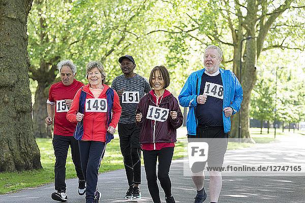 Active seniors power walking sports race in park