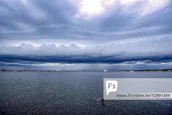 Delphin tummelt sich in der Indian River Lagoon  Schelfwolke zieht vor herannahendem Sturm auf  Florida