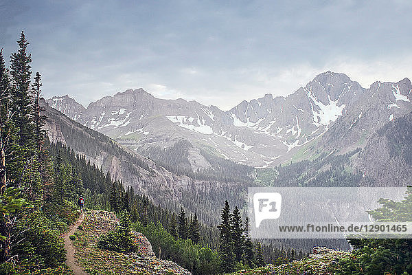 Man hiking,  Mount Sneffels,  Ouray,  Colorado,  USA