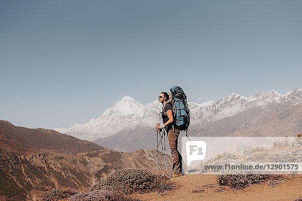Hiker on peak  Annapurna Circuit  the Himalayas  Dhaulagiri and Tukuche mountains in background  Muktinath  Nepal