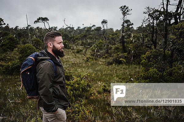 Wanderer im Wald  Tofino  Kanada