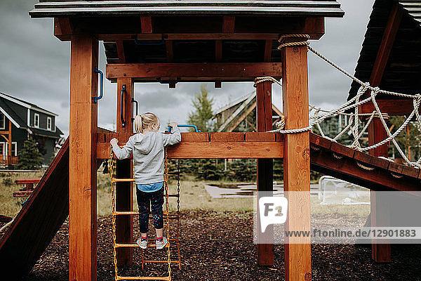 Girl climbing ladder to playground platform  rear view