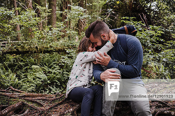 Father comforting daughter in forest  Tofino  Canada