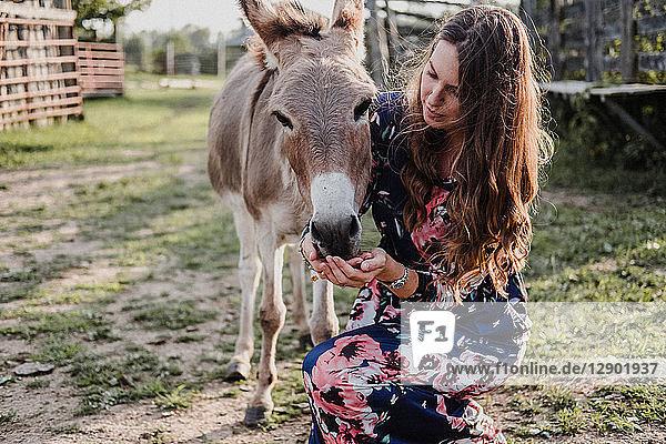 Frau füttert Esel