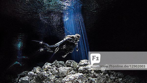 Freitaucher-Höhlentauchen  Tulum  Quintana Roo  Mexiko