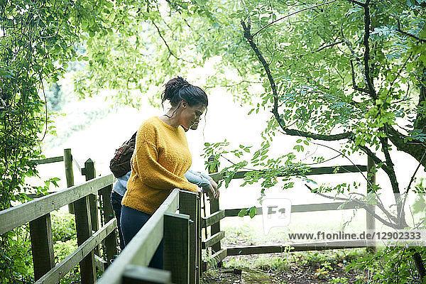 Hiker and friend looking over wooden bridge