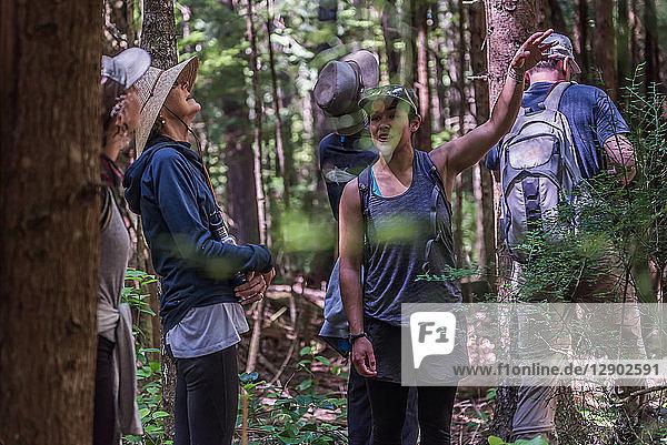 Freunde wandern im Wald  Johnstone Strait  Telegraph Cove  Kanada