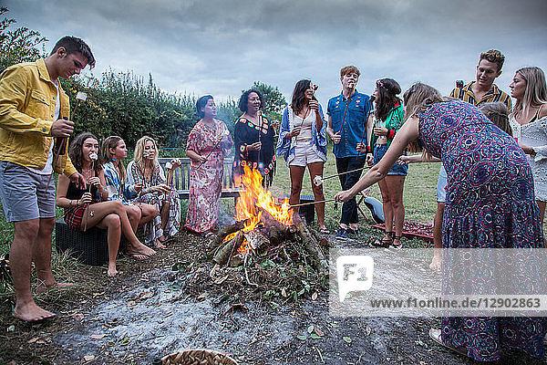 Friends at bonfire party in park