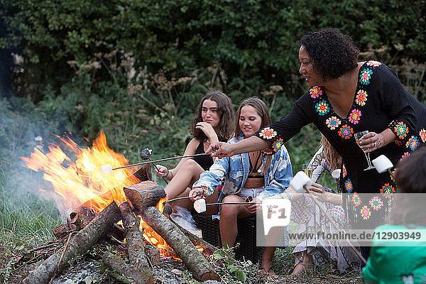 Freunde toasten Marshmallows bei Lagerfeuer-Party im Park Freunde toasten Marshmallows bei Lagerfeuer-Party im Park