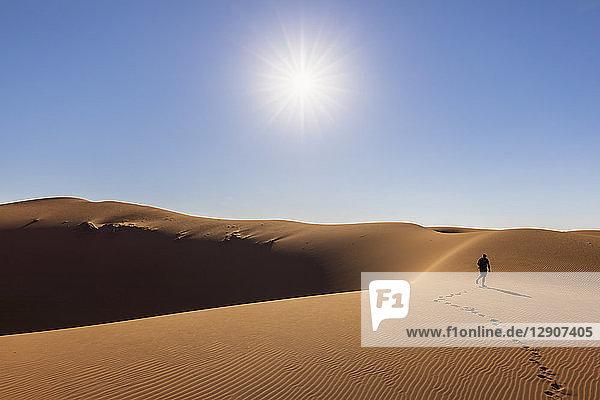 Africa  Namibia  Namib desert  Naukluft National Park  tourist walking on dune