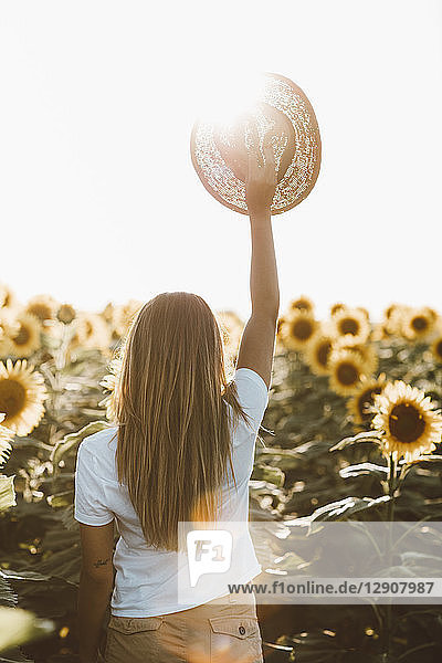Back view of young woman holding straw hat  standing in a field of sunflowers