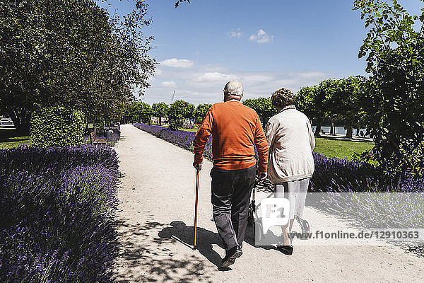 Senior couple walking in park  woman using wheeled walker